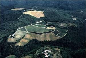 Castello di Fonterutoli Sample 5 – Vineyard: Le Ripe, Parcel: Trebbio