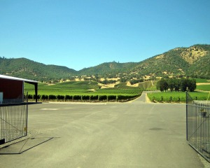 Del Rio Vineyards from the Rogue Valley AVA