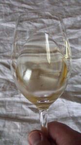 Riedel Riesling & Sauvignon Blanc Wine Glass
